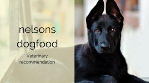 ネルソンズが中・大型犬のアレルギー対策におすすめの理由